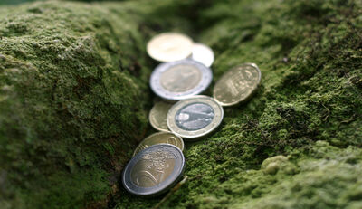 """Green Bonds"" geraten immer mehr in Mode"