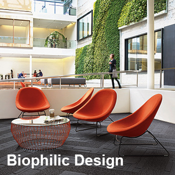 Blickpunkt Interface Biophilic Design